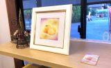 柿の絵がショップカードになりました♪