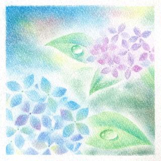パステルアート 紫陽花と水滴